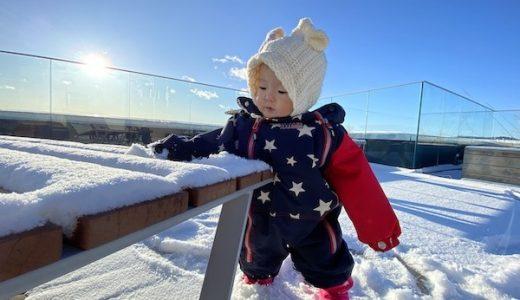 2020年暖冬…オスロにも遂に!